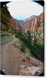 Acrylic Print featuring the photograph Grand Canyon Or Bust by Jon Emery