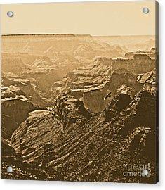 Grand Canyon Soaring Bird Of Prey Square Rustic Acrylic Print by Shawn O'Brien