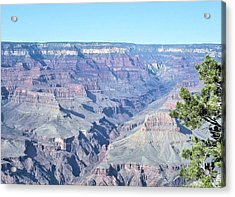 Grand Canyon South Acrylic Print by David Rizzo
