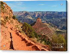 Grand Canyon South Kaibab Trail Overlooking Oneill Butte Acrylic Print by Shawn O'Brien