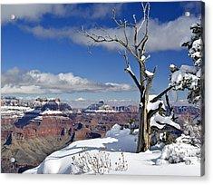 Grand Canyon Winter -2 Acrylic Print