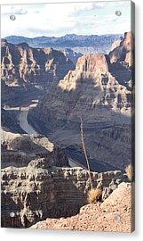 Grand Canyon Acrylic Print by Yosi Cupano