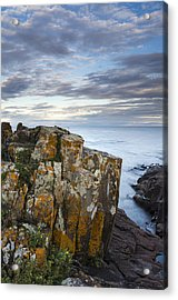 Grand Marais Cliffs Acrylic Print by Thomas Pettengill