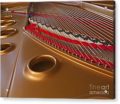 Grand Piano Acrylic Print by Ann Horn