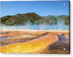 Grand Prismatic Spring - Yellowstone National Park Acrylic Print by Brian Harig