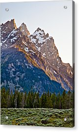 Grand Teton From Jenny Lake Acrylic Print by Adam Pender