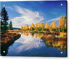 Grand Teton National Park, Wy Acrylic Print by Ron thomas