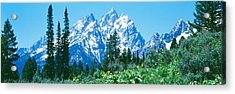Grand Teton National Park Wy Usa Acrylic Print by Panoramic Images