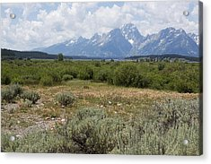 Grand Tetons From Willow Flats Acrylic Print by Belinda Greb