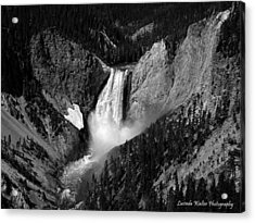 Acrylic Print featuring the photograph Grandeur by Lucinda Walter