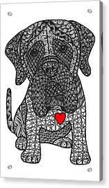 Grandeur - Mastiff Acrylic Print
