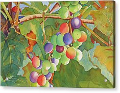 Grape Fusion Acrylic Print