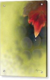 Grape Leaf Water Drop Acrylic Print by Kume Bryant