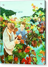 Grape Pickers Acrylic Print by Cristiana Angelini