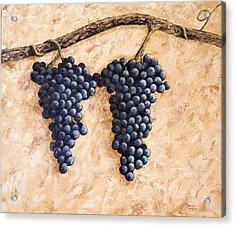 Grape Vine Acrylic Print by Darice Machel McGuire