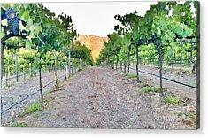Grape Vines Acrylic Print