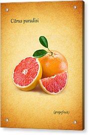 Grapefruit Acrylic Print by Mark Rogan