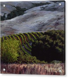 Grapes And Oaks Acrylic Print by Betsee  Talavera