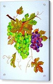 Grapes Acrylic Print by Elena Mahoney
