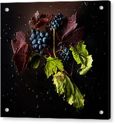 Grapes Acrylic Print by Ivan Vukelic