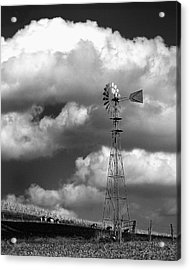 Grapes Of Wrath Acrylic Print by Dick Wood