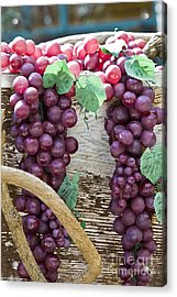 Grapes Acrylic Print by Tim Hightower