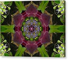 Grapevine Portal Mandala Acrylic Print