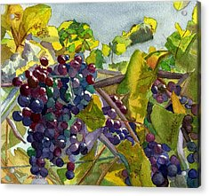 Acrylic Print featuring the painting Grapevines by Lynne Reichhart