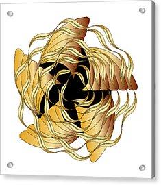 Graphic No. 1314 Acrylic Print
