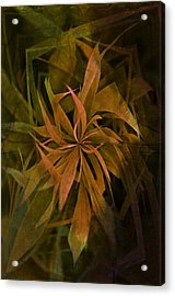 Grass Abstract - Earth Acrylic Print by Marianna Mills