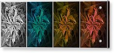 Elements Of Nature - Air Water Earth Fire Acrylic Print by Marianna Mills