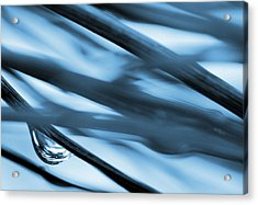Grass And Raindrop Abstract In Blue Acrylic Print by Natalie Kinnear