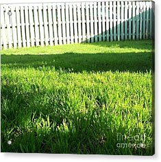 Grass Shadows Acrylic Print by Susan Williams