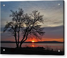 Grassy Point Sunrise Acrylic Print by Thomas  McGuire