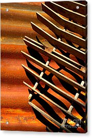 Acrylic Print featuring the photograph Grate Shadows by Robert Riordan
