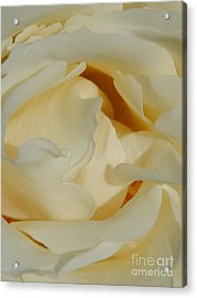 Grave Beauty Acrylic Print by Michael Hoard
