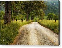 Gravel Road In The Smokies Acrylic Print by Andrew Soundarajan
