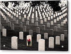Graves At Arlington National Cemetery Acrylic Print