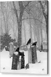 Graveyard Snow With Four Ravens  Acrylic Print by Gothicrow Images