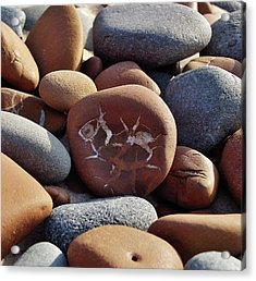 Gray And Brown Stones Acrylic Print by Kathi Mirto