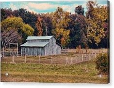 Gray Barn In Autumn Acrylic Print by Jai Johnson