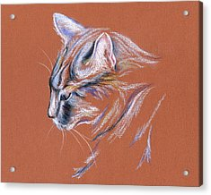 Acrylic Print featuring the pastel Gray Cat In Profile - Pastel by MM Anderson