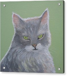 Cat With Green Eyes  Acrylic Print