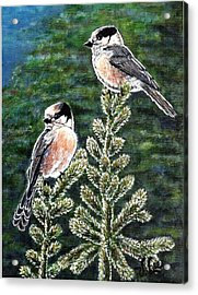Acrylic Print featuring the painting Gray Jays by VLee Watson