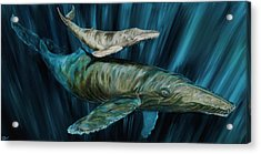Acrylic Print featuring the painting Graywhale Momma And Calf by Steve Ozment
