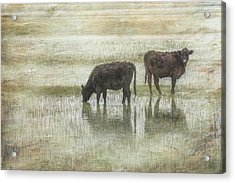 Grazin In The Pond Acrylic Print