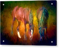Grazing Horses Version 2 Textured Acrylic Print