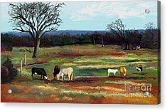 Grazing In The Pasture Acrylic Print by Sandra Aguirre