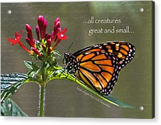 Great And Small Acrylic Print by Karen Stephenson