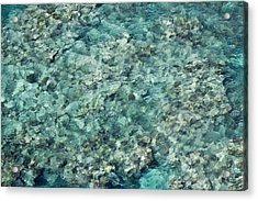 Great Barrier Reef Texture Acrylic Print